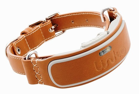 LINK AKC Dog Fitness Activity Monitor